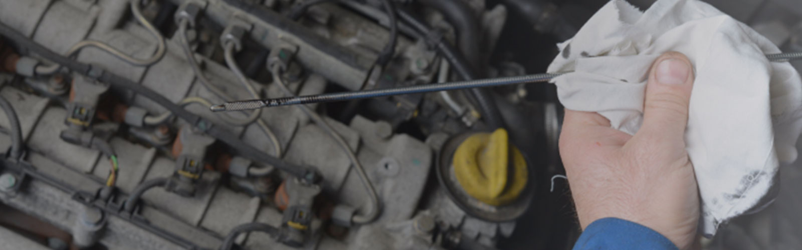 To keep running smoothly, your car highly relies on oil, lube, and oil filters.